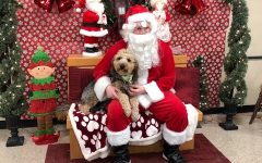 The reporter's dog, Asher, poses for a picture with Santa